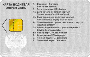 card-company-2